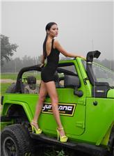 越野车和车模图片 越野车车模图片大全
